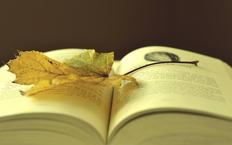 ... un plácido paseo, tapizado de bruma y mágicos versos