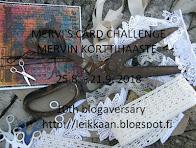 Mervi's blogaversary