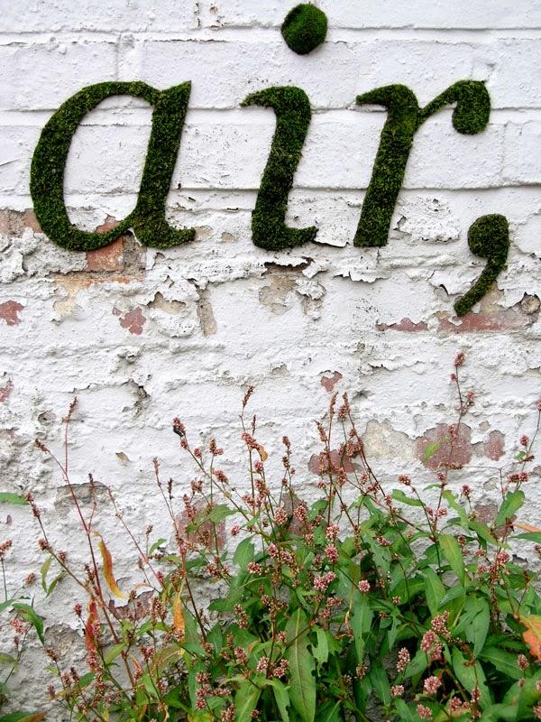 la reines blog moos grafitti mit moos w nde bemalen. Black Bedroom Furniture Sets. Home Design Ideas