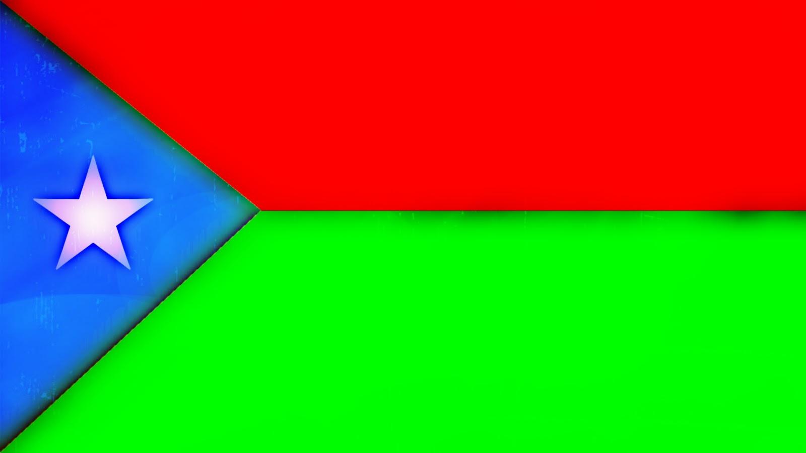 balochistan flag - photo #3