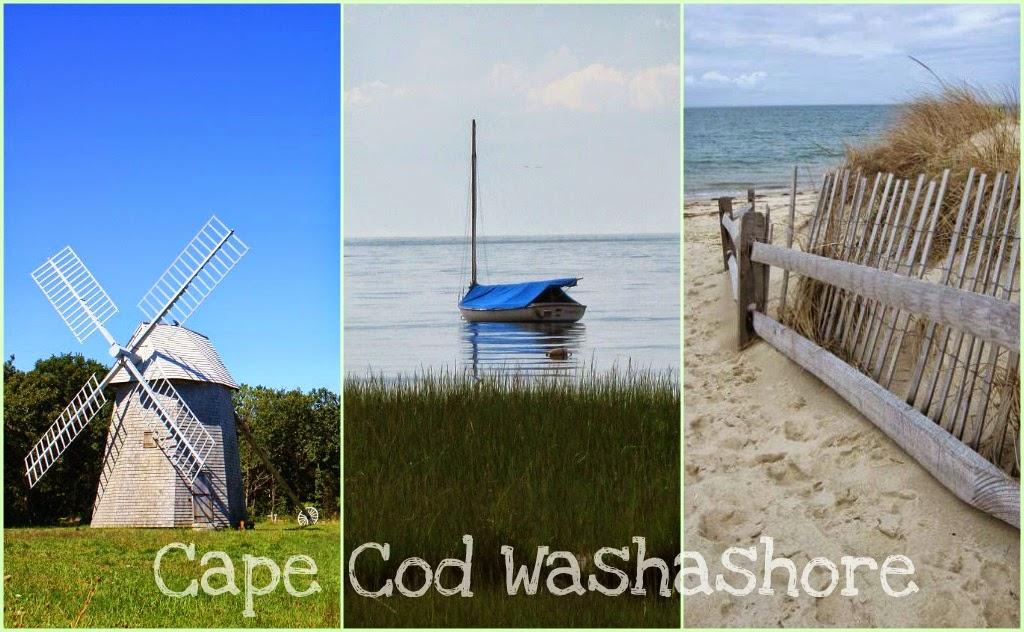 Cape Cod Washashore