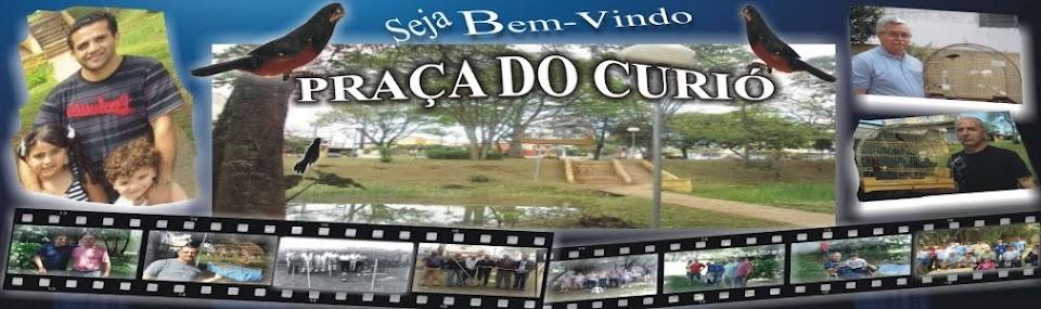 praça do Curió MOVIMENTO AMIGOS DO CURIÓ DE GUARULHOS