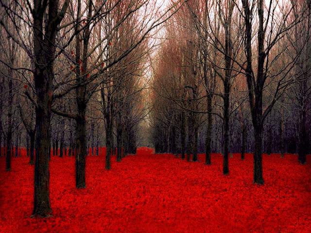 Autumn Wall Art2