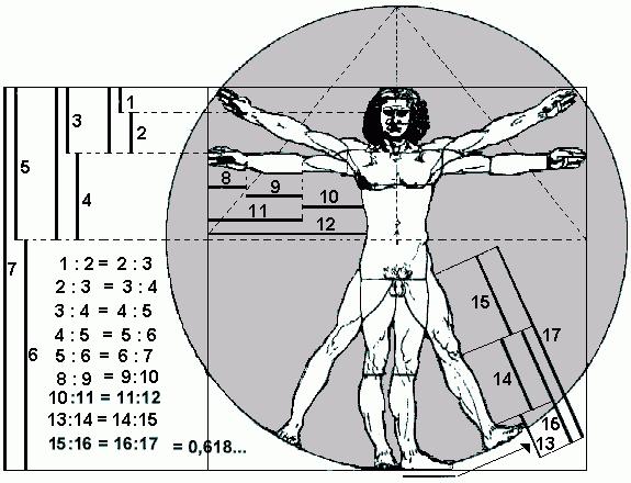 Leonardo da vinci el hombre de vitrubio for Medidas antropometricas del cuerpo humano