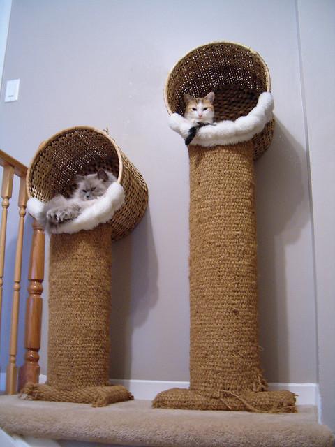 Rbol rascador de sisal con una cesta de mimbre de ikea for Muebles para gatos ikea