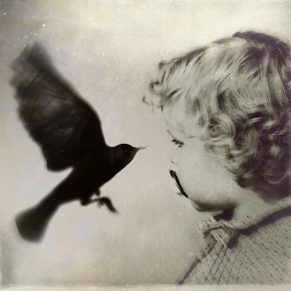 A Little Bird Told Me © Mimi Svanberg