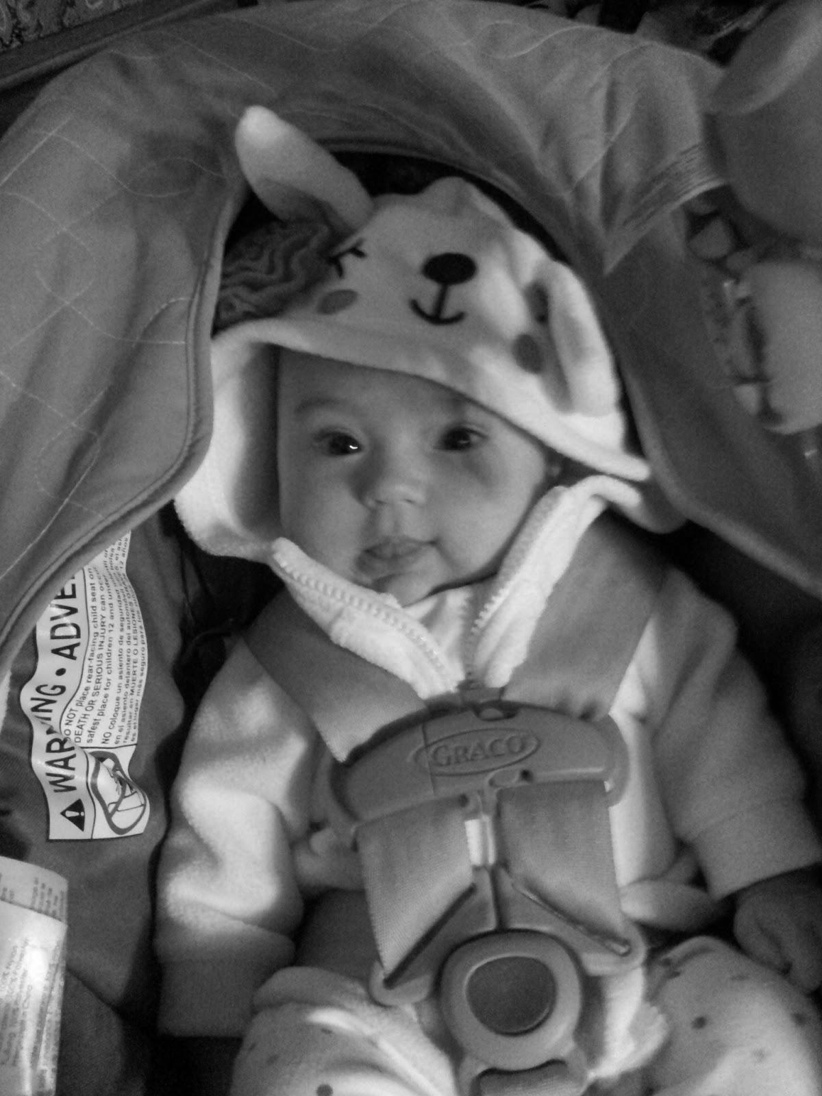 Lamby Baby