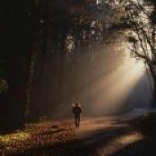 Brilho e vida no seu caminho