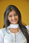 Pooja Jhaveri new Glam photo shoot-thumbnail-20