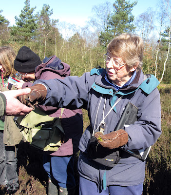 Botanist Jan Hendey handing out a moss specimen on Keston Common