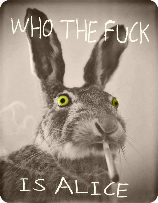 http://3.bp.blogspot.com/-ZZcf-3qPItk/UP8Irbdu-PI/AAAAAAAAa9Y/AOUfXbVpPxc/s1600/Who+the+fuck+is+Alice.jpg