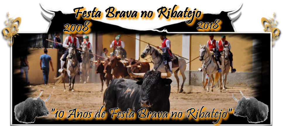 "Festa Brava no Ribatejo - ""Blog que leva a emoção da Festa Brava à tua casa"""
