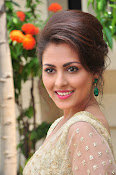 Madhu Shalini sizzling in saree-thumbnail-20