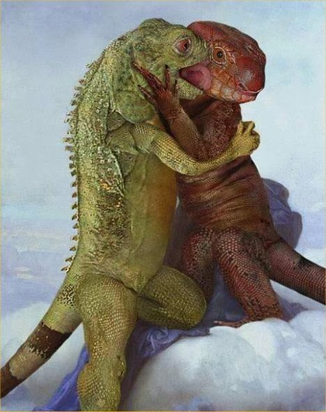 Lizards love