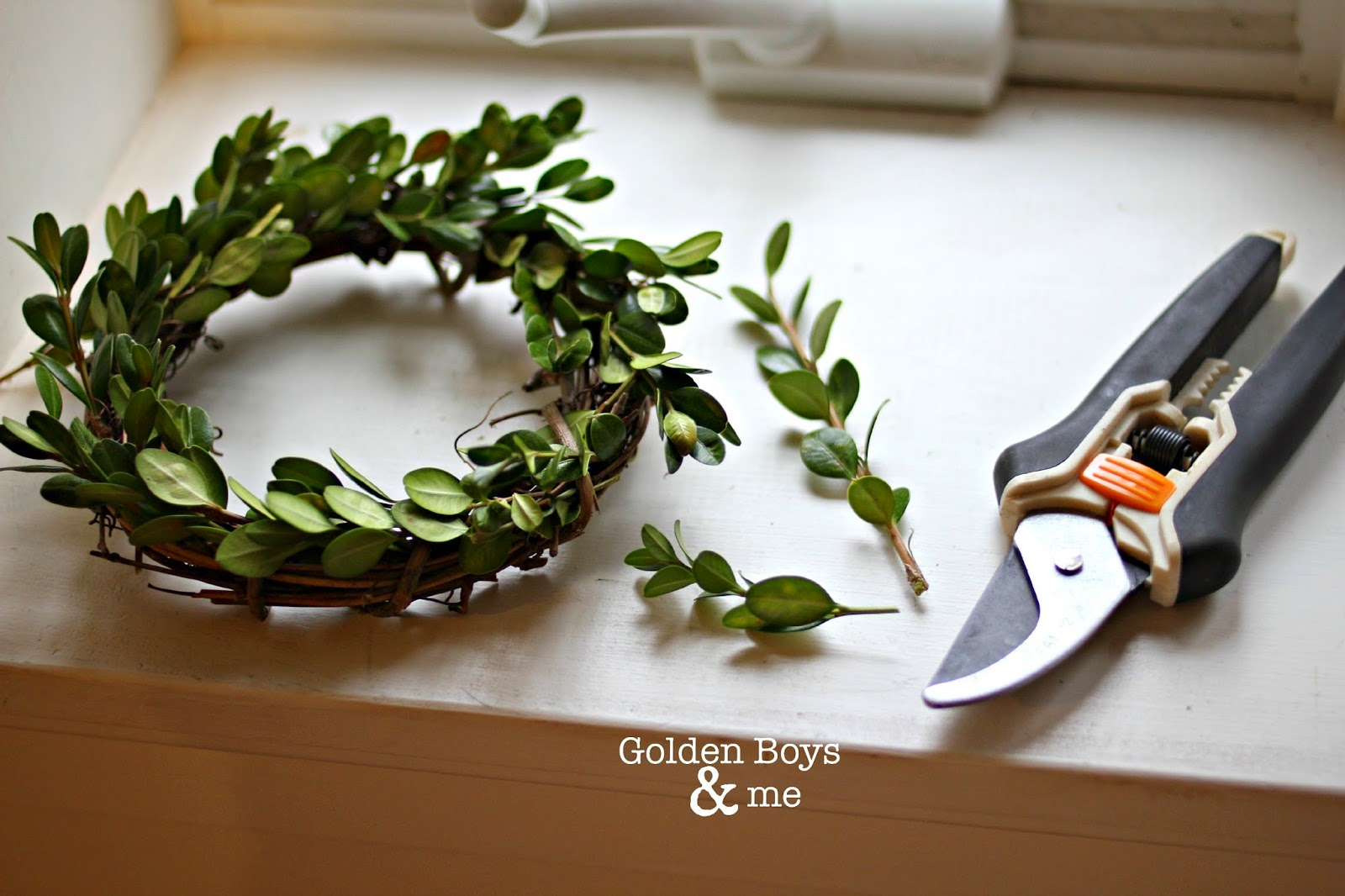 DIY boxwood wreath tutorial using grapevine wreath-www.goldenboysandme.com