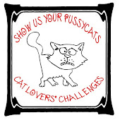 MY CATS ONLY CHALLENGE BLOG
