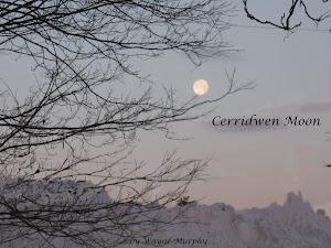 'Cerridwen Moon' by Wayne Murphy