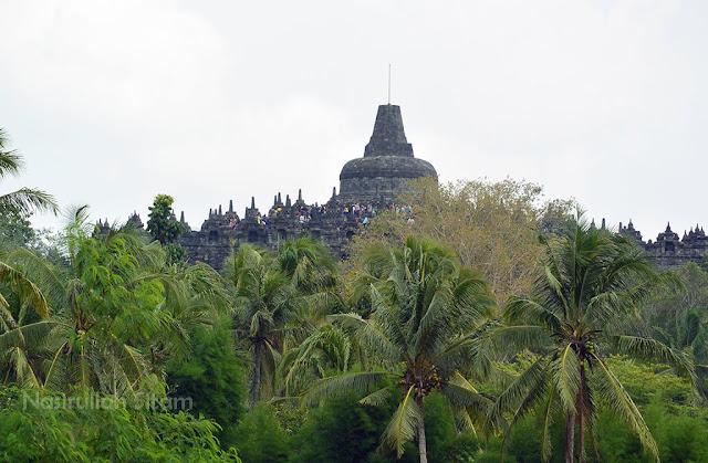 Berfoto dengan latar belakang Candi Borobudur