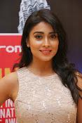 Shriya Saran Glam pics-thumbnail-9