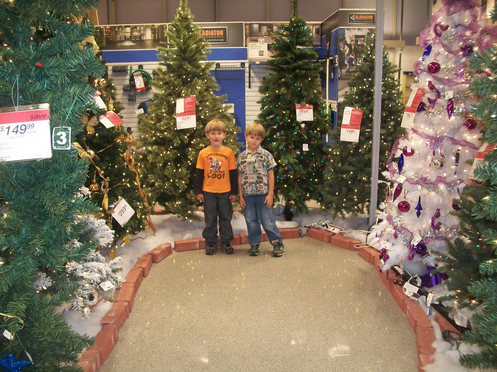 the first thing i notice at the sears christmas shop was their display of trees they were all decorated with items that they sell in the store - Sears Christmas Decorations