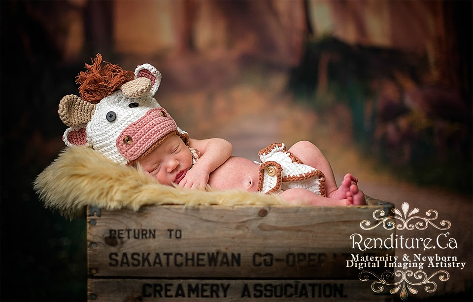 Saskatoon-Newborn-Photographer-Baby-Photography-Photographer-Maternity-Pregnancy-Family-Renditure-Child-Infant-Tot-Kid-Photos-Saskatchewan-YXE