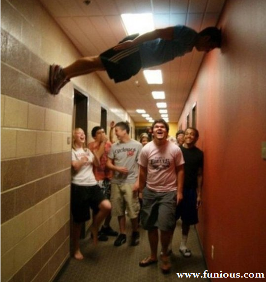Funny Picture Planking Like a Boss