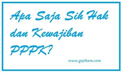 apa itu pppk?