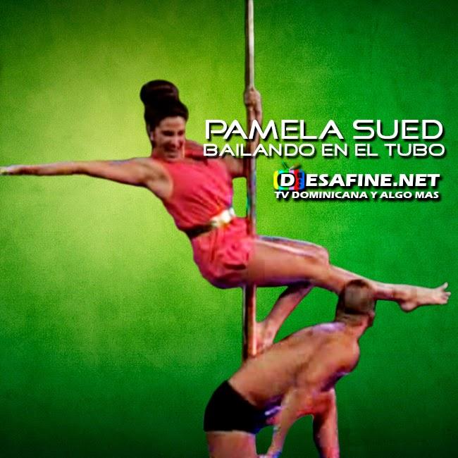 http://www.desafine.net/2015/02/pamela-sued-bailando-en-el-tubo-en.html