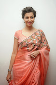 Hamsa Nandini photos at Legend audio-thumbnail-6