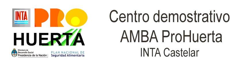 Centro Demostrativo AMBA ProHuerta INTA Castelar