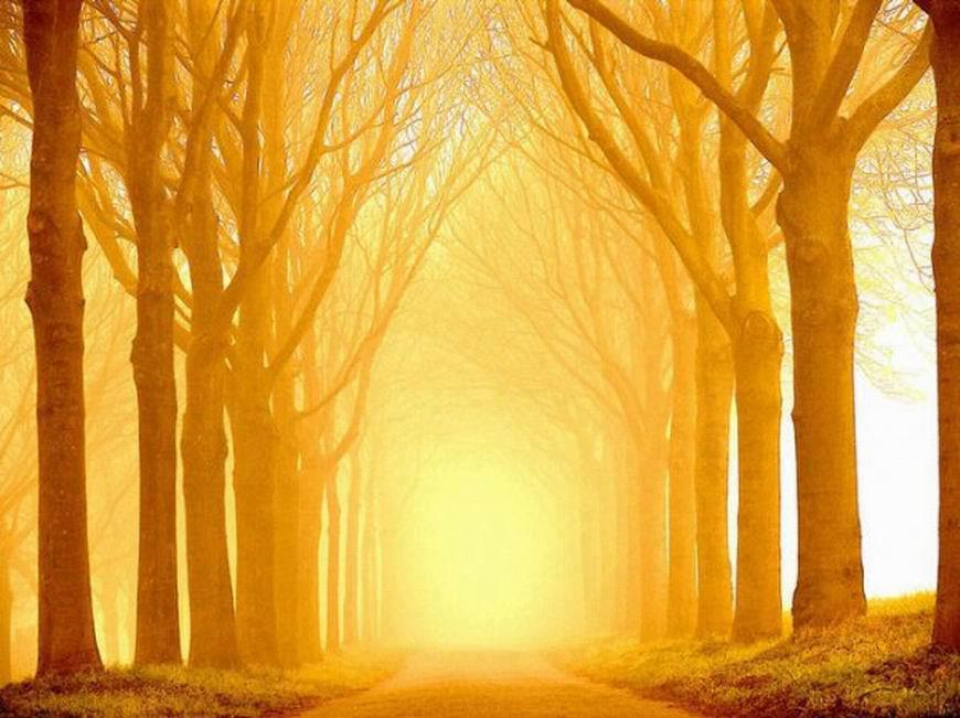 la luz tony de pablo la luz es un concepto que aparece en todas las
