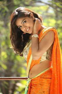 Actress Vithika Sheru Pictures in Saree at Paddanandi Premalo Mari Press Meet  41