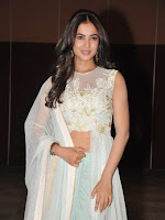 Sonal Chauhan photos at Pandaga chesko audio-cover-photo