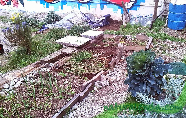 espacio de cultivo en el huerto urbano