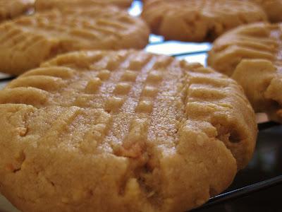 Peanut Butter Crisscross Cookie Closeup