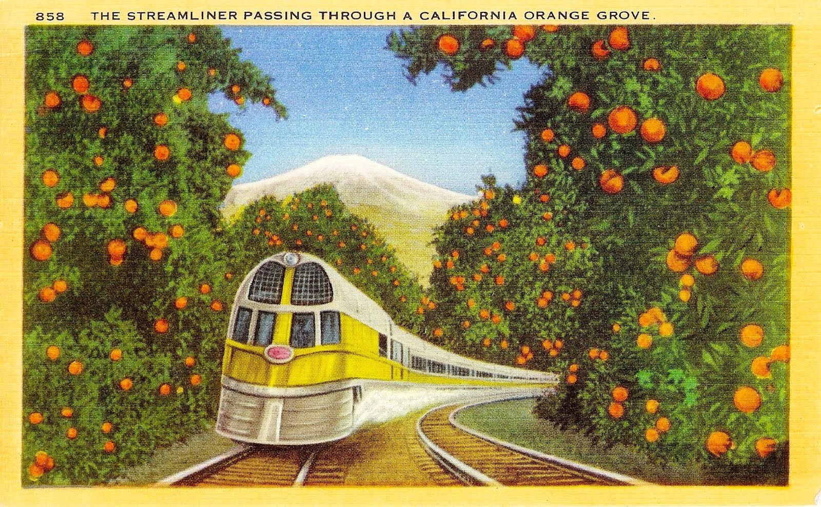 southern california garden guide basic gardening garden news