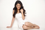 rachana malhotra latest glam pics-thumbnail-6