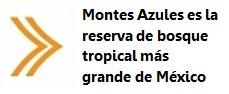 Montes Azules es la reserva de bosque tropical más grande del mundo