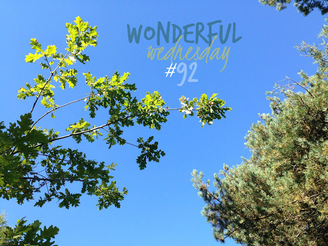 Wonderful Wednesday #92