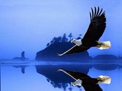 Ser livre é viver em dimensões espetáculares