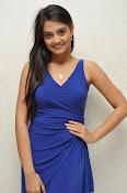 Nikitha Narayan glam pics in blue-thumbnail-10