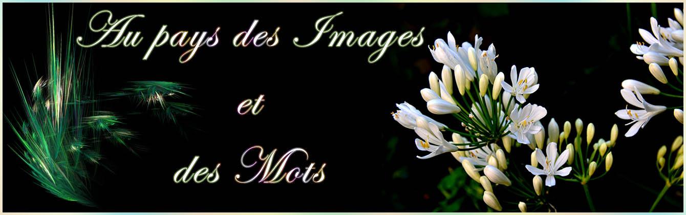 Au pays des images et des mots
