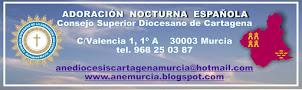 Consejo Diocesano de la Adoración Nocturna en Murcia