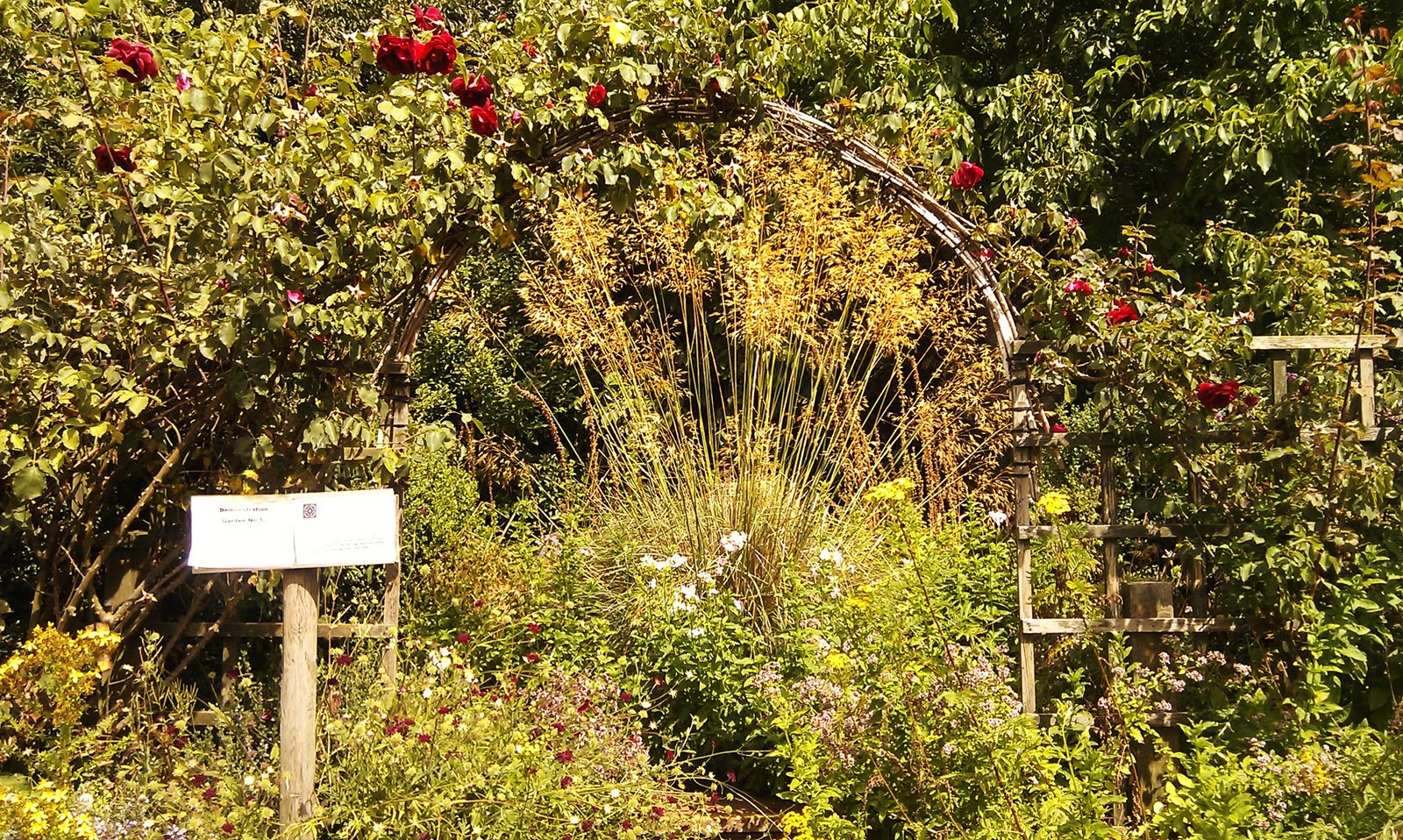 Chefs Kitchen Garden: The National Herb Centre