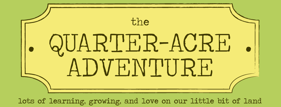 The Quarter-Acre Adventure