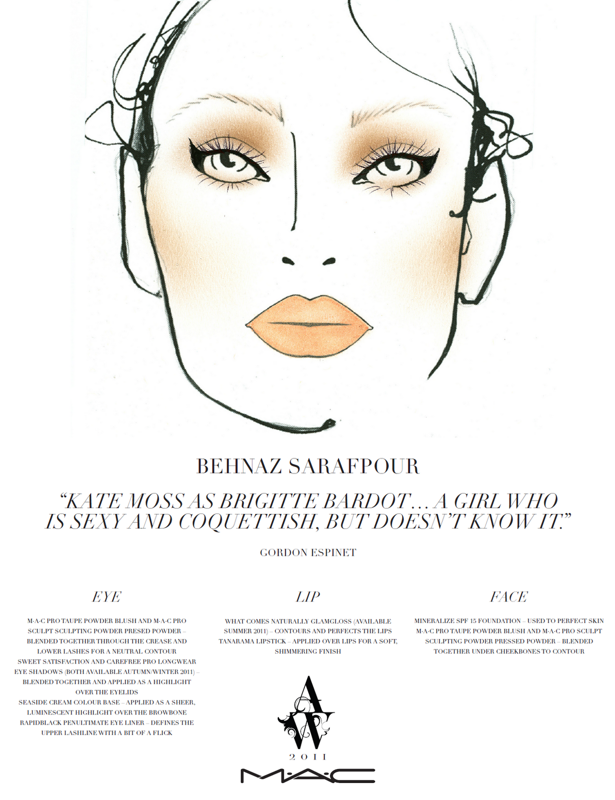 Mac Face Charts '11 daily face charts from
