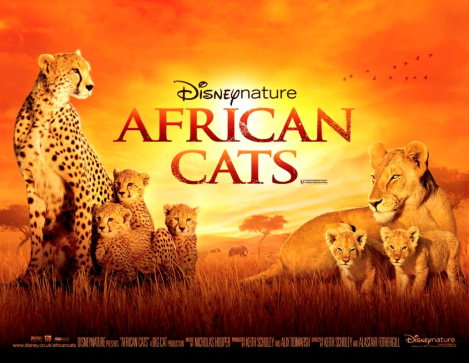 African Cats Royal UK premiere details with trailer and stills
