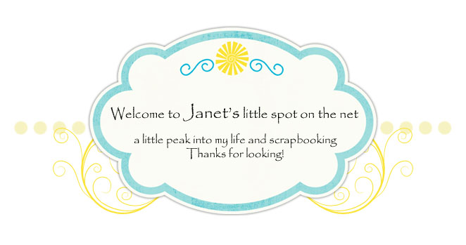 Welcome to Janet's Blog