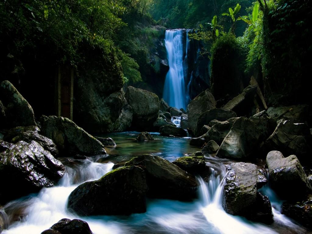 http://3.bp.blogspot.com/-Zd5G_NsvkFg/Tc-NoiTt32I/AAAAAAAAAIs/I2kOkA5dqM0/s1600/cascada_en_el_bosque-1024x768.jpg