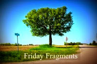 http://www.halfpastkissintime.com/2014/06/friday-fragments-episode-305.html